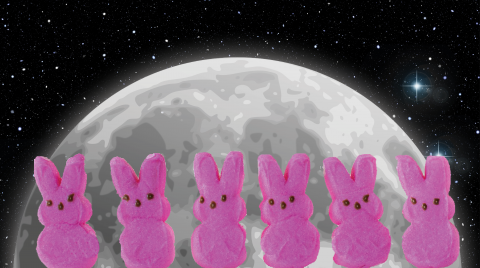 Marshmallow Peeps on a Moon and Stars Background