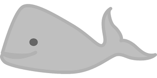 Image of a whale cartoon